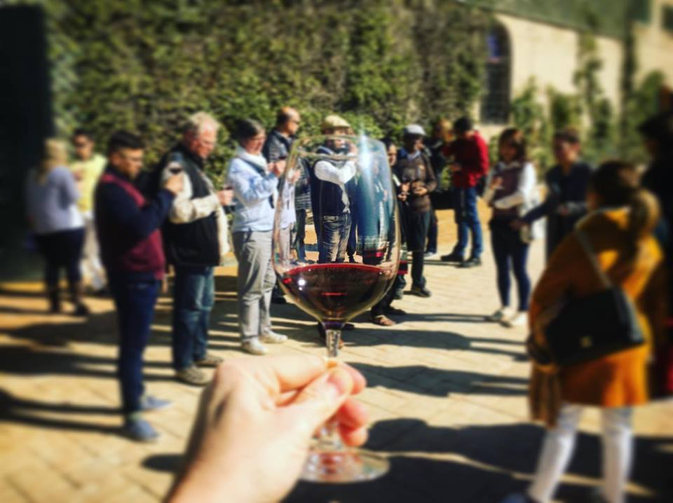 Jean Leon Wine Tasting in Penedes outside of Barcelona