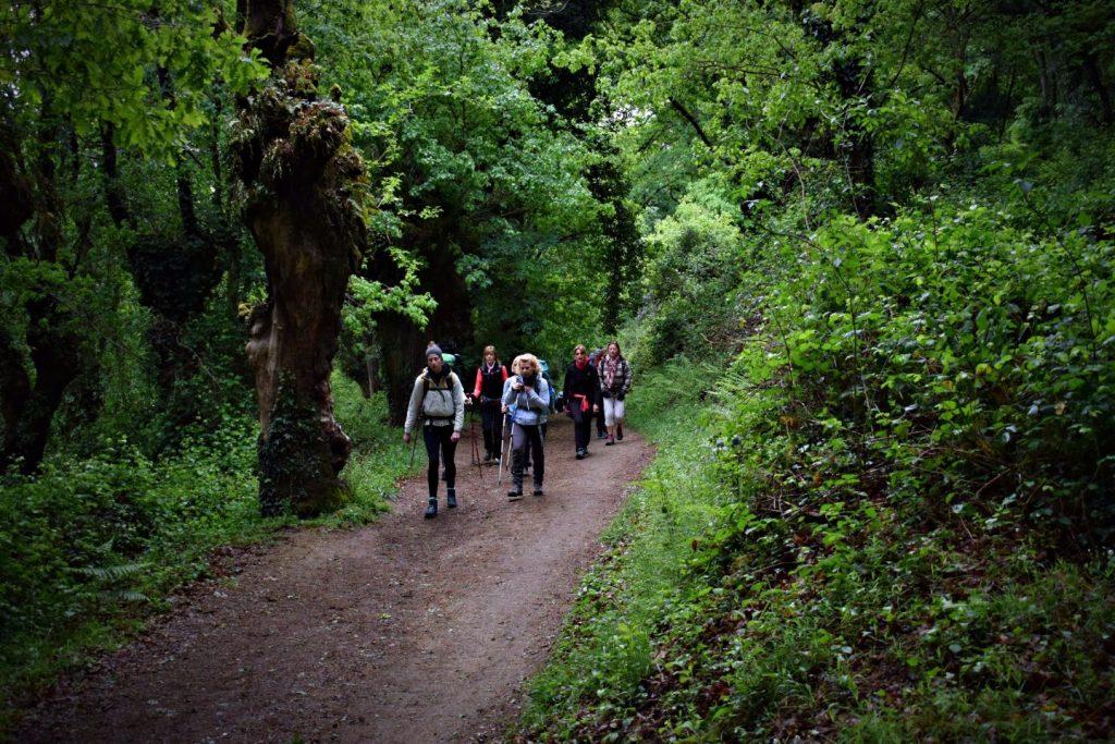 Sarria to Portomarín Morning Walk