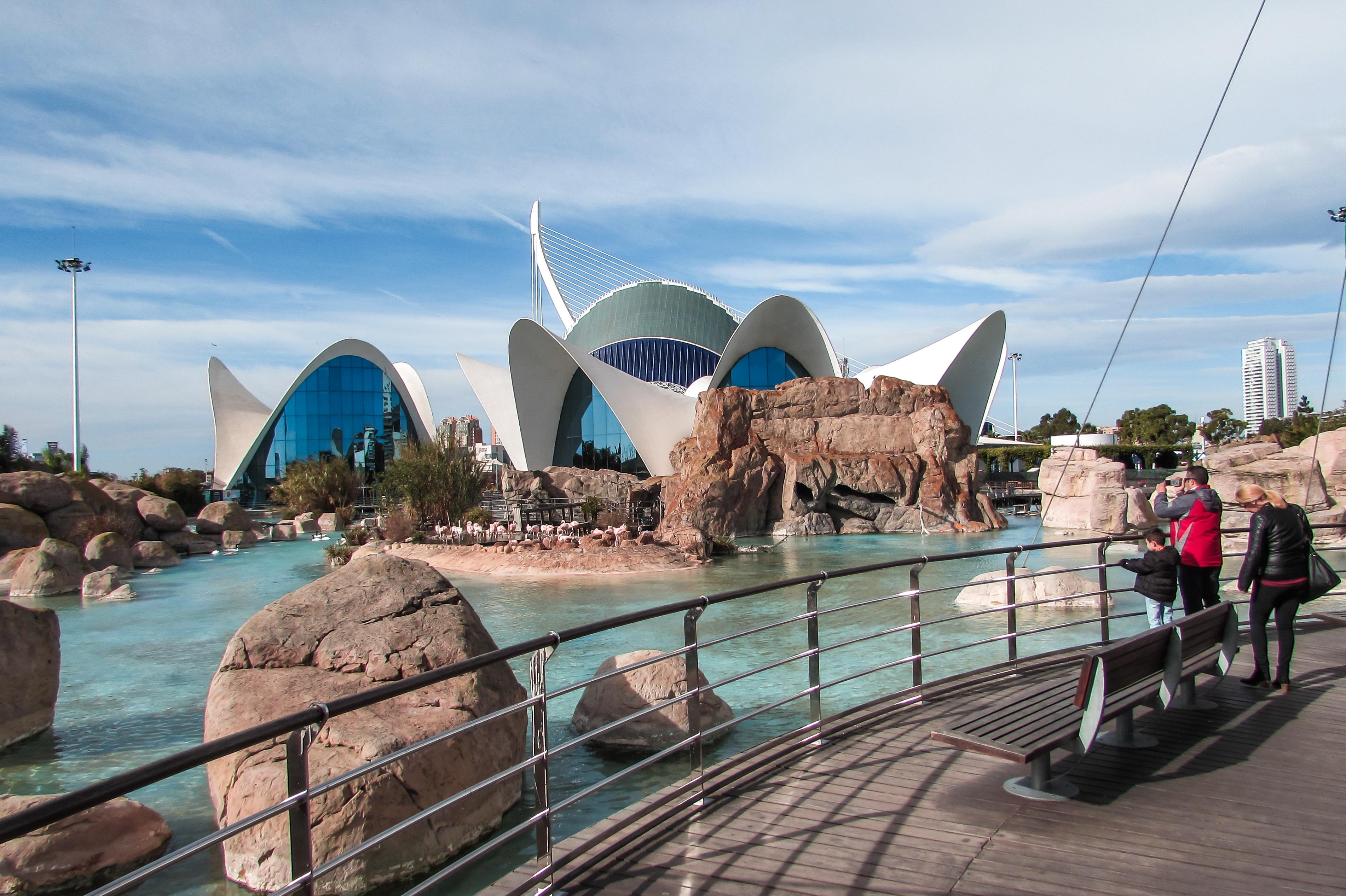 Valencia's Oceanogràfic aquarium - by Ben Holbrook
