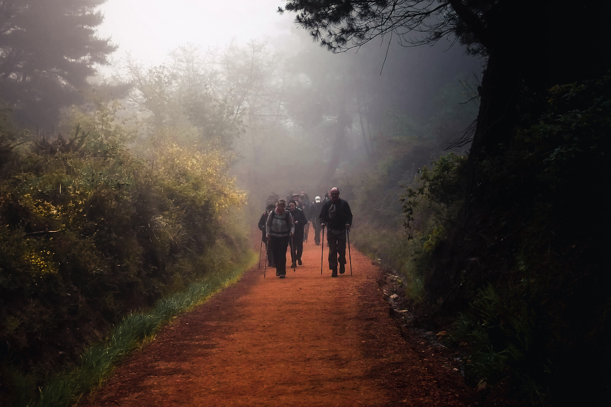 Early morning mist on the Camino de Santiago in northern Spain - by Ben Holbrook