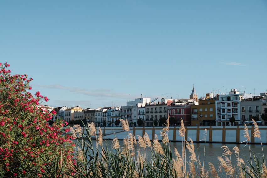 The Right Bank of the Guadalquivir River, Seville - by Ben Holbrook from DriftwoodJournals.com