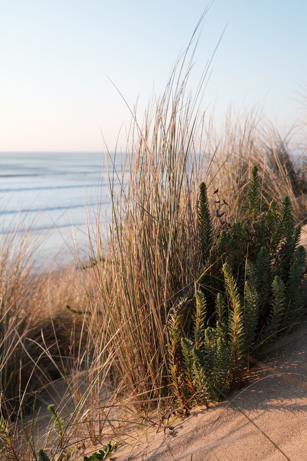 Llangennith Beach, Gower Peninsula South Wales, UK - Landscape Photography by Ben Holbrook-3