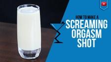 Screaming Orgasm Shot Recipe