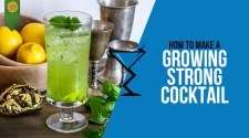 Growing Strong Cocktail