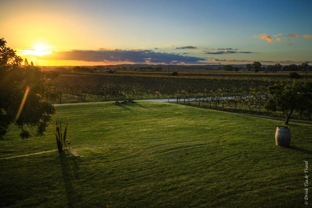 View from Artisans of Barossa Winery, Barossa Valley