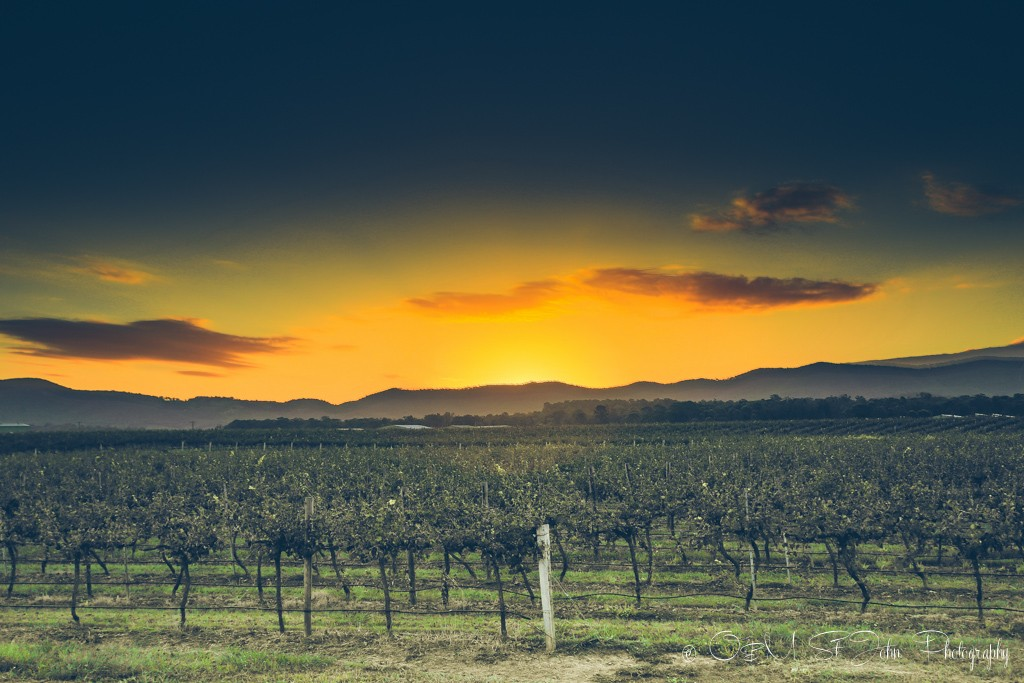 Sunset in Hunter Valley, NSW Australia