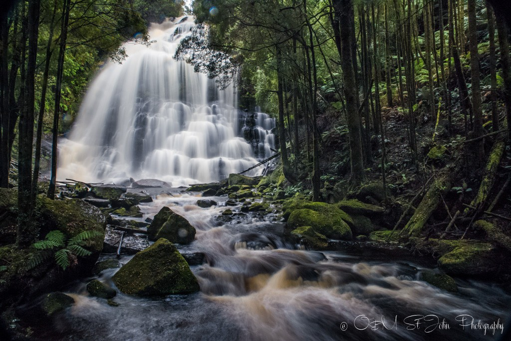 Nelson Falls, a cascade waterfall, located in the UNESCO World Heritage–listed Tasmanian Wilderness, in the West Coast region of Tasmania.