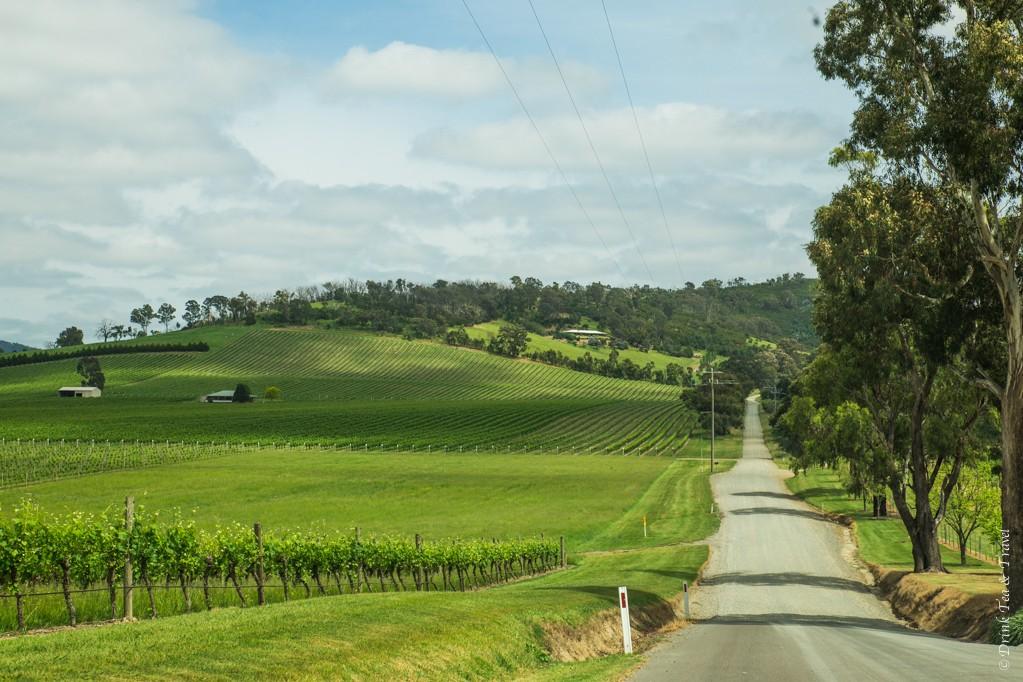 In Yarra Valley, Victoria