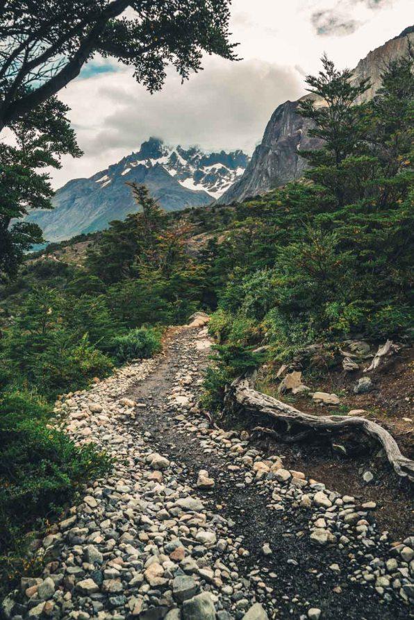 Chile Torres del Paine-0904