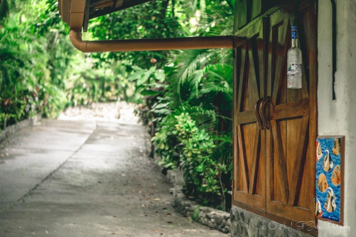 Costa Rica Costa Verde-1713
