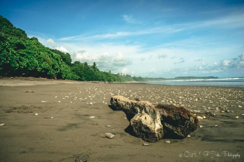 Costa Rica Dominical-8786