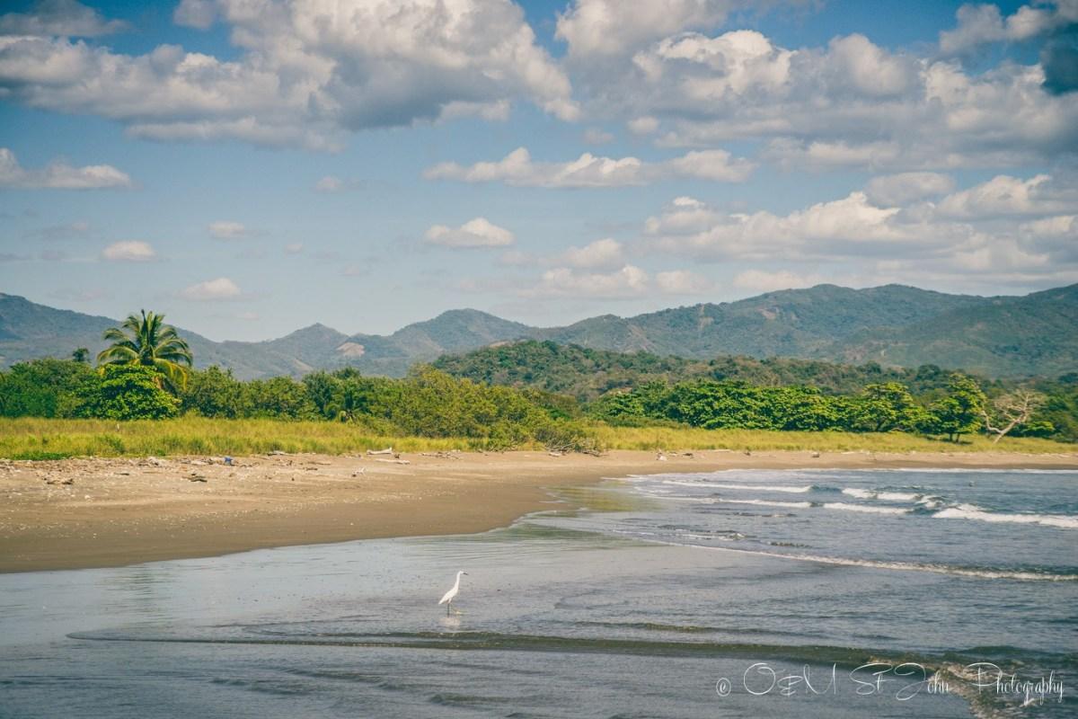 Costa Rica Samara-4649