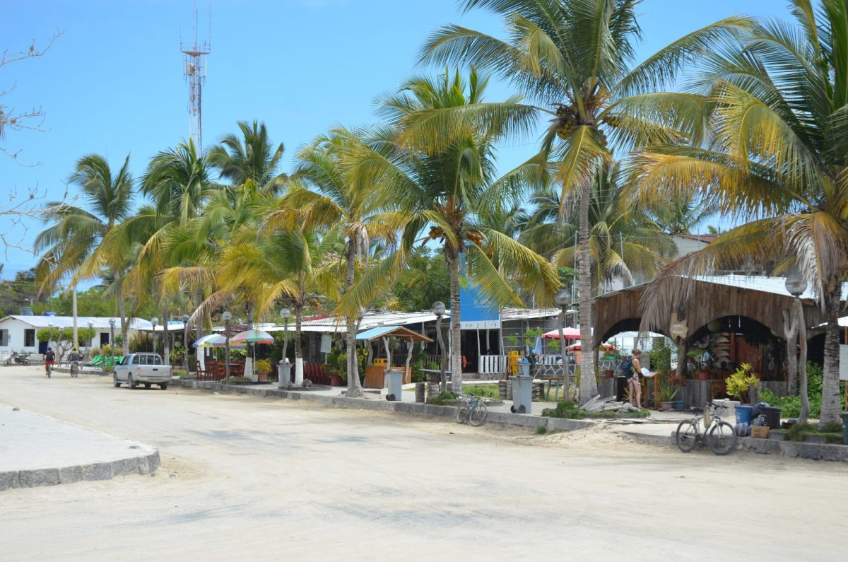 Main street on Isabela Island . Photo courtesy of Galakiwi