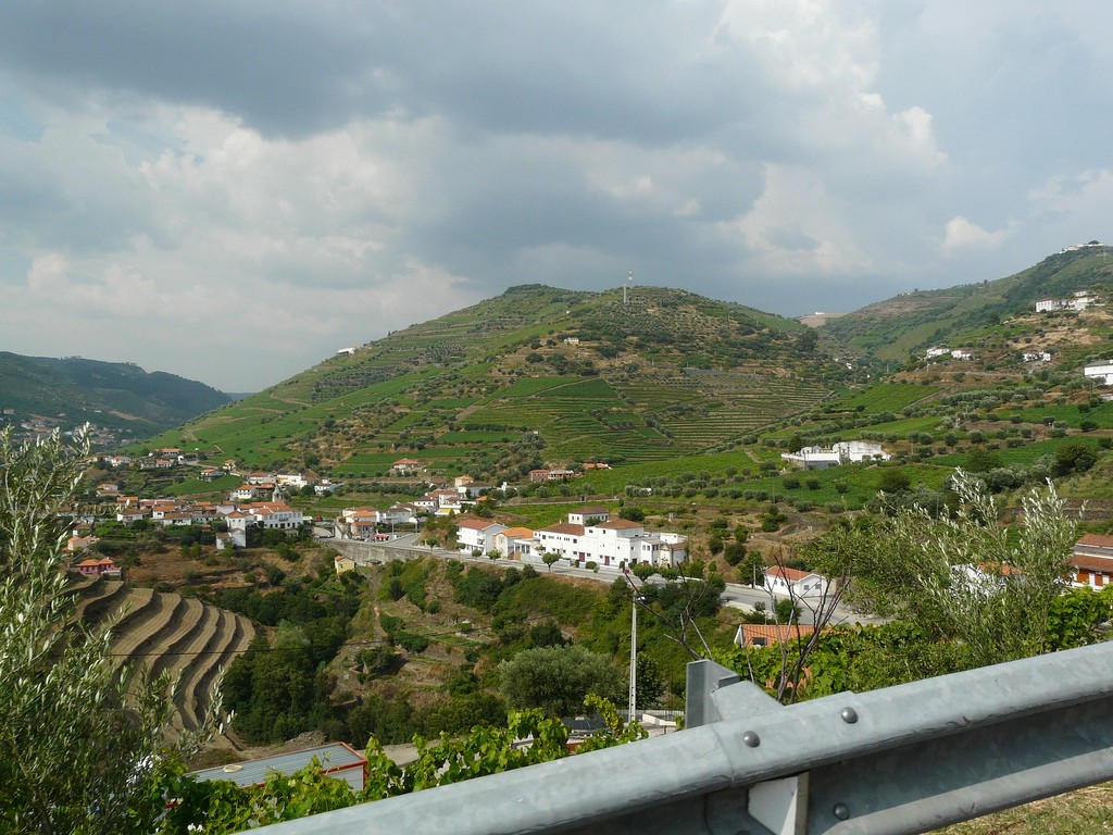 View of Duoro Valley vineyards