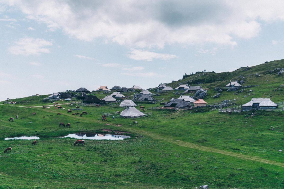 things to do in slovenia on holiday: Velika Planina