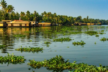 essay on visit to kerala