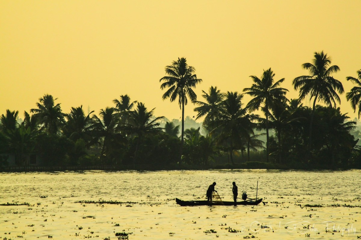 Local fisherman at sunset. Kerala Backwaters. India