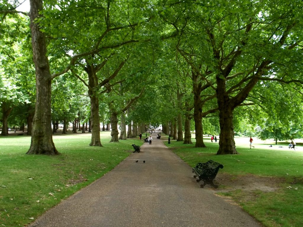 Photo Credit: C.B. Wentworth Green Park