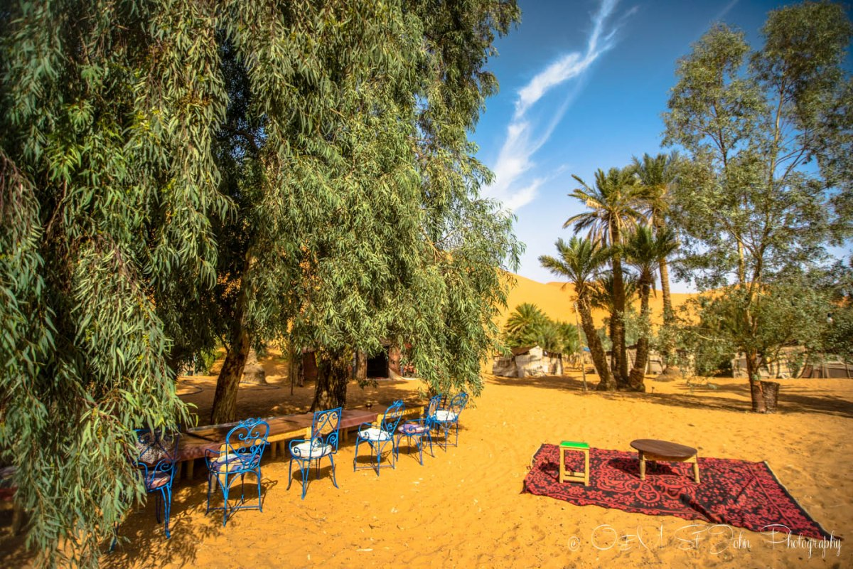 Inside the oasis in Erg Chebbi, Sahara Desert. Morocco