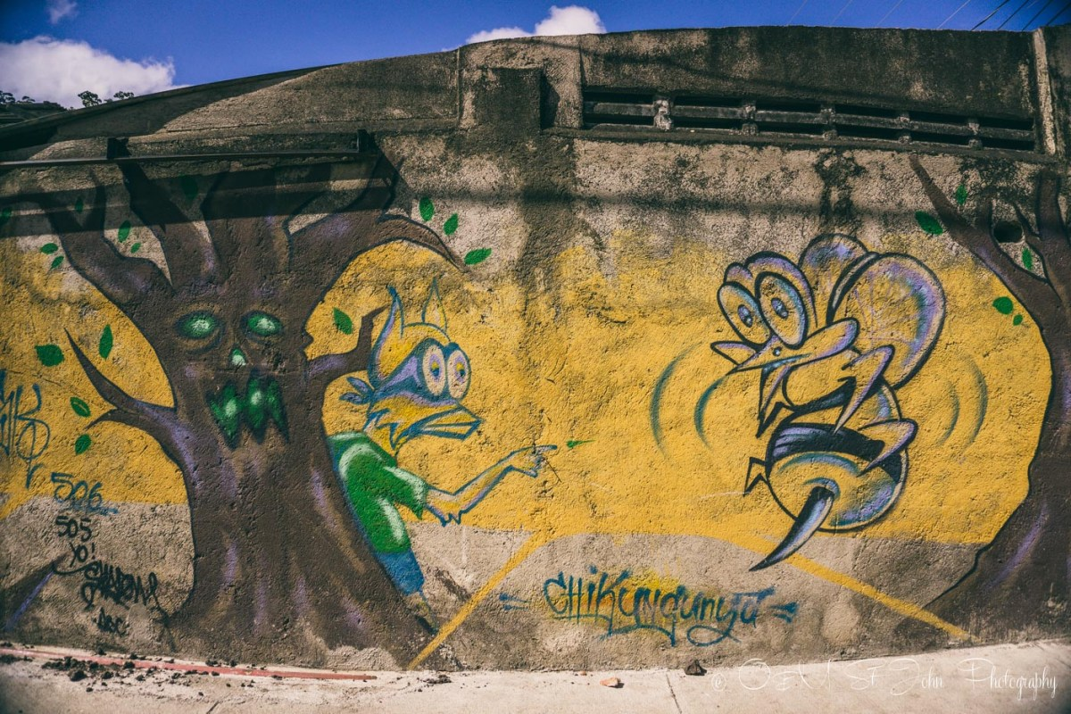 Local's depiction of chikungunya, a virus infection common in the area on the street in San Juan del Sur. Nicaragua