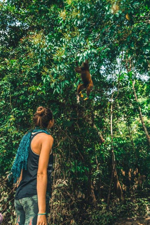 Peru Amazon Oksana Coby-8486