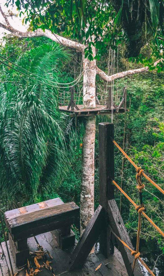 Peru Amazon zipline-570