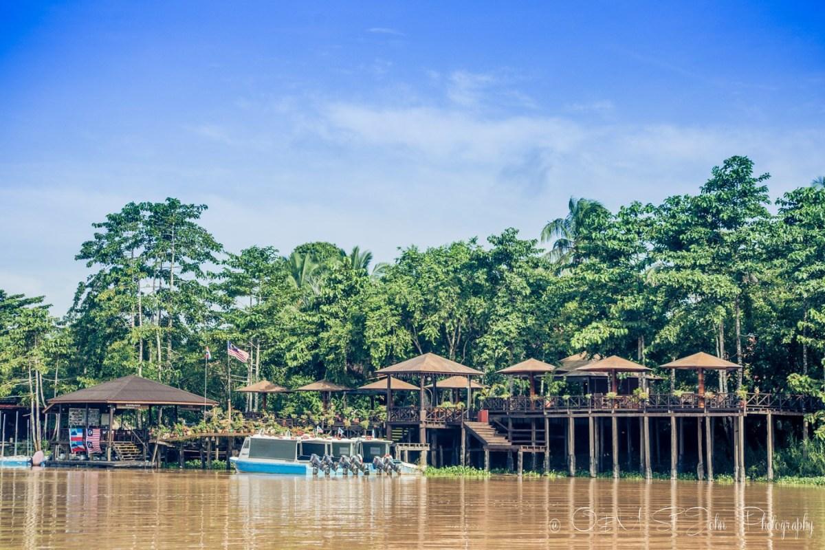 Kinabatangan River, Sabah, Malaysian Borneo