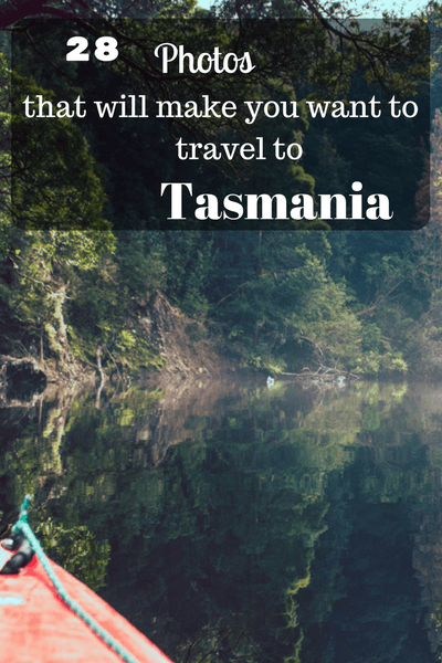 If there is one thing Tasmania continues to do over and over again, it is surprise its visitors, awarding them with beautiful sights and great adventures.