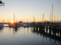Manly Harbour