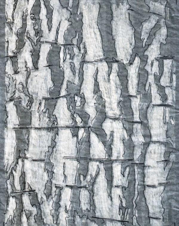 Bark Diagrams Dripps Phinney Studio