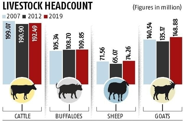 Livestock-Headcount