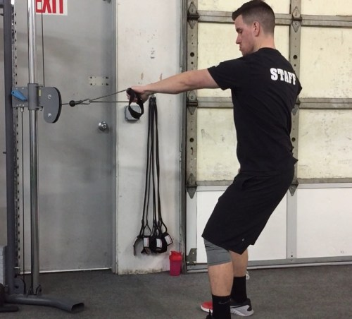 Standing Cable Row Start