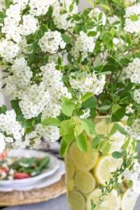 Progressive Dinner (& A Favorite Summer Salad) | Driven by ...