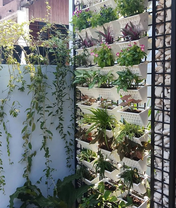 Vertical Garden Ideas Baskets