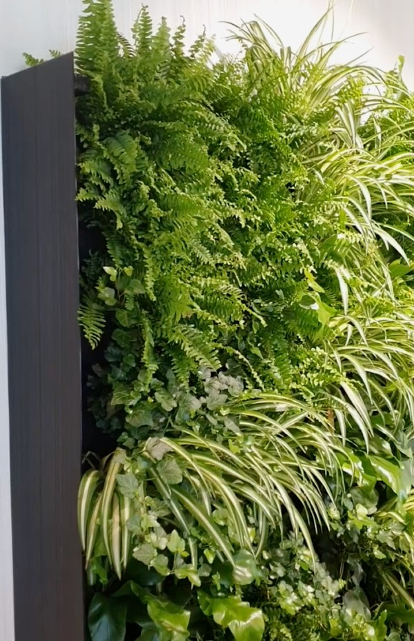 Vertical Garden Wall Green