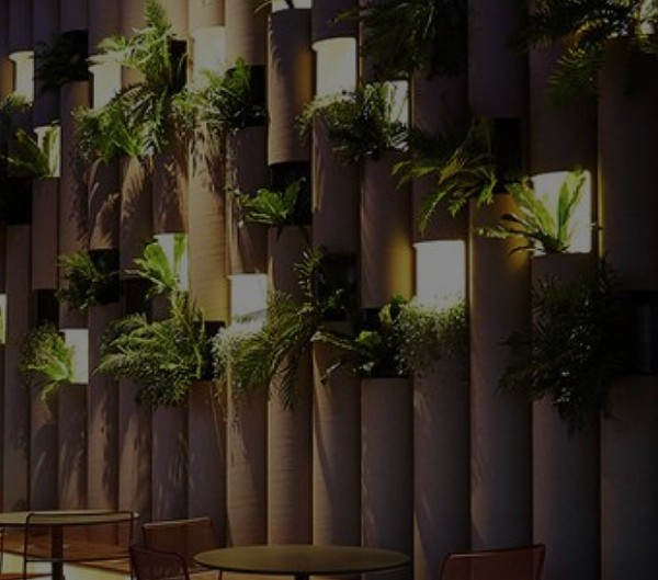 Wall with light and plants