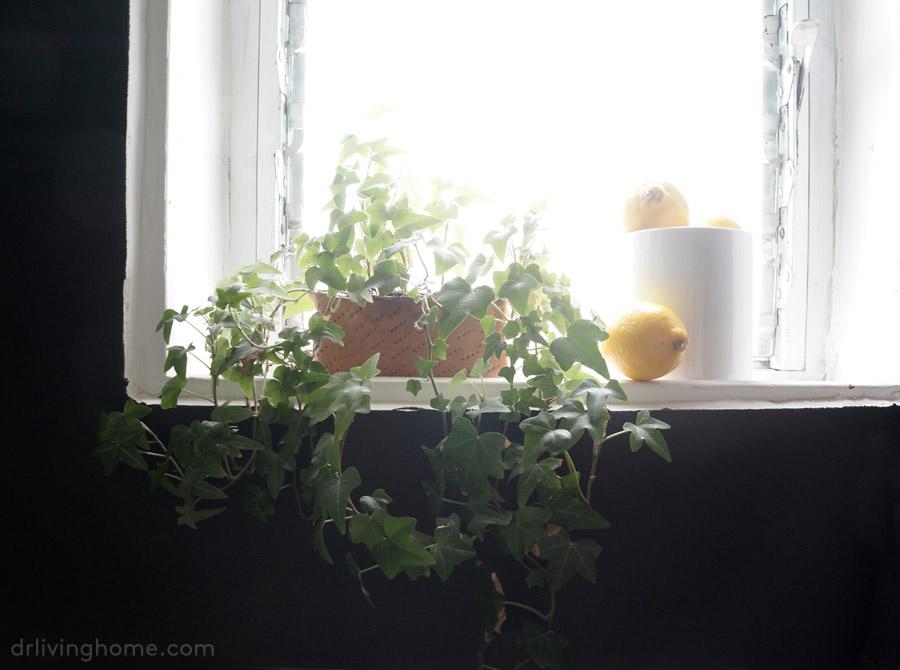 Renovar la cocina sin obras