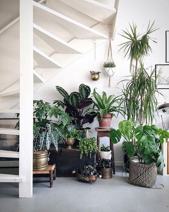 5 formas de modernizar tu decoración