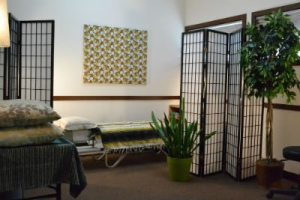 Therapy Room at Dr. Manlove's office
