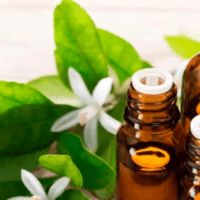 Neroli-Essential-Oil-Uses-and-Benefits-f