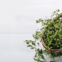 Thyme-Essential-Oil-Uses-and-Benefits-h