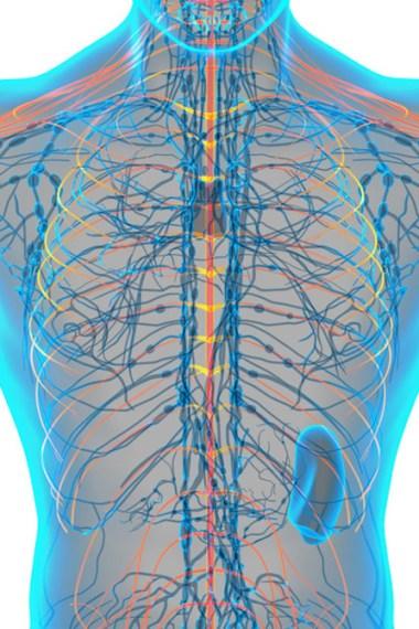 Frekans Tıbbı