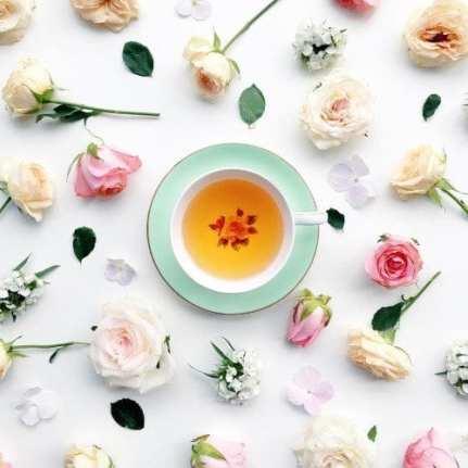 immune booster shot antioxidant orangecounty