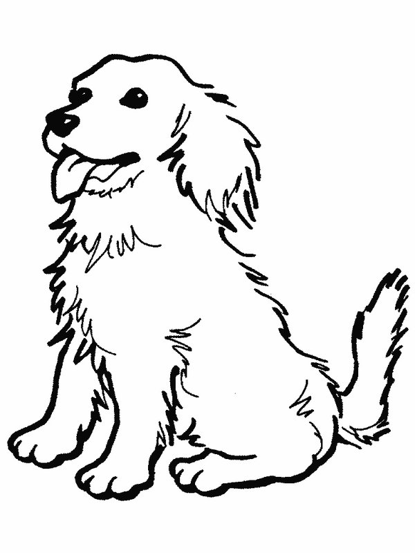 Dog Coloring Pages 2019- Dr. Odd