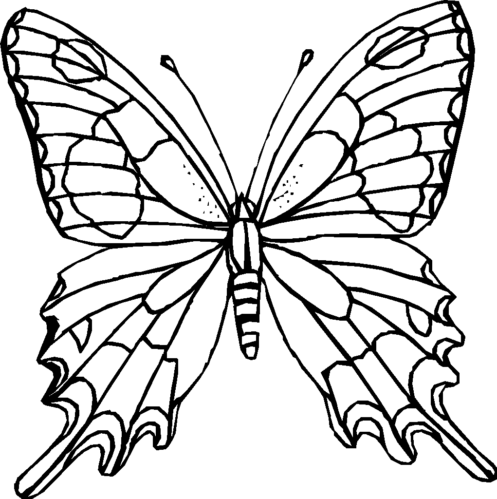 Butterfly Coloring Page 2019: Best, Cool, Funny