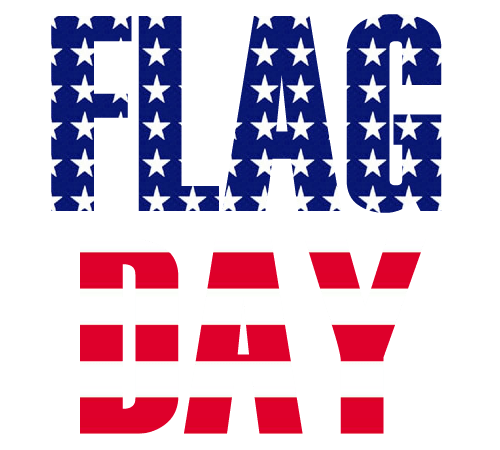 Flag Day  Best Cool Funny