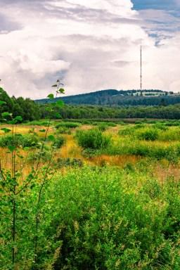 Rotes Moor / Rhön