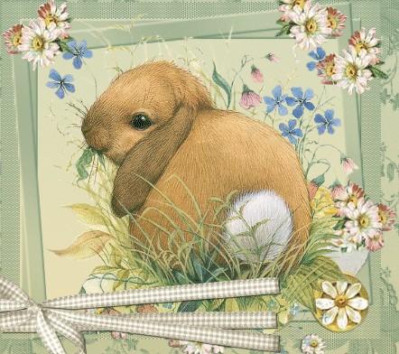Pasqua raccolta immagini gif e glitter per decorazioni e