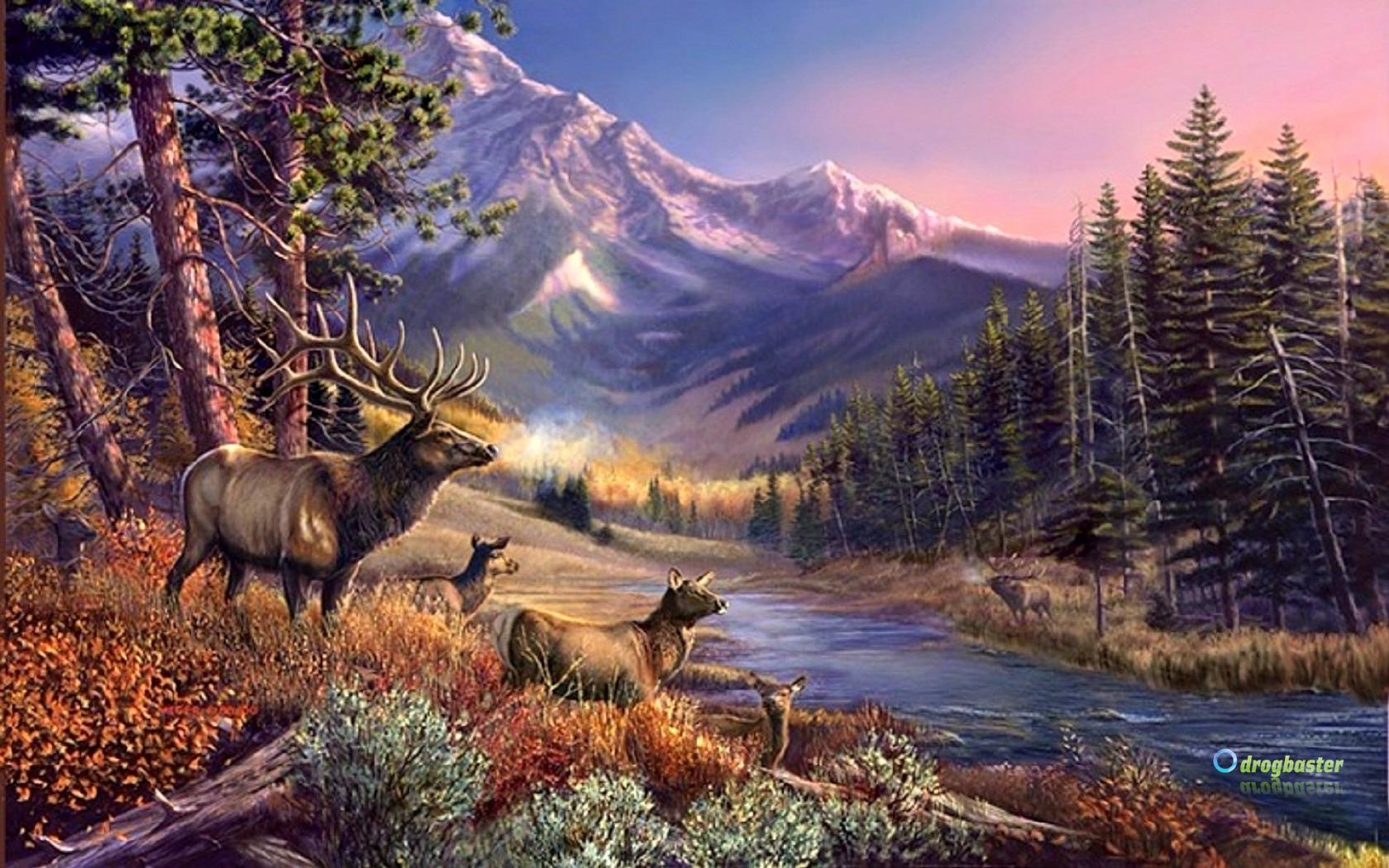 Sfondilandia immagini e wallpaper natura paesaggi e animali