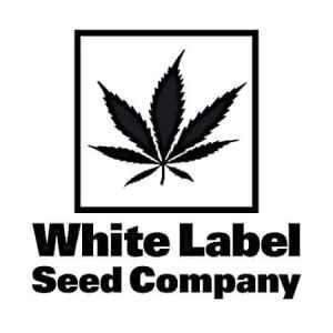 white-label-company